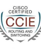 Internetworking Case Studies - CCIE