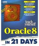 Oracle8 Replication