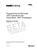 Programming the Microsoft® .NET Framework with Visual Basic® .NET (Prerelease)