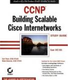 Building Scablable Cisco Internetworks