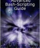 Advanced Bash−Scripting Guide