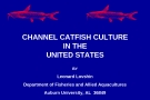 CHANNEL CATFISH CULTURE IN THE UNITED STATES BY