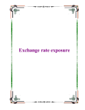 Exchange rate exposure