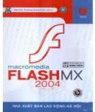 Macromedia Flash MX 2004 and Video