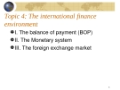 The international finance environment