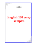 English 120 essay samples