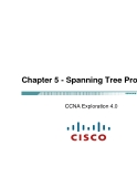 Chapter 5 - Spanning Tree Protocol CCNA
