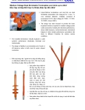 HEAT SHRINKABLE TERMINATION AND STRAIGHT JOINT Medium Voltage Heat Shrinkable Termination and Joint
