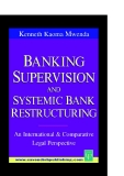 BANKING SUPERVISION AND SYSTEMIC BANK RESTRUCTURING