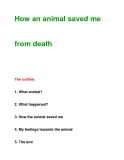 How an animal saved mefrom death