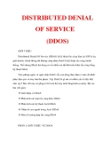 DISTRIBUTED DENIAL OF SERVICE (DDOS)_1