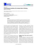 """Báo cáo sinh học: """"X-chromosome inactivation: the molecular basis of silencing"""""""