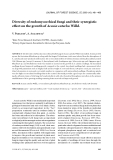 """Báo cáo lâm nghiệp: """"Diversity of endomycorrhizal fungi and their synergistic effect on the growth of Acacia catechu Willd."""""""