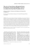 """Báo cáo lâm nghiệp: """"The survey of some factors affecting bark lesion development caused by Phytophthora cactorum on common beech and other broadleaved trees"""""""