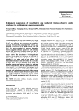 """Báo cáo khoa học: """"Enhanced expression of constitutive and inducible forms of nitric oxide synthase in autoimmune encephalomyelitis"""""""