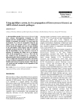 """Báo cáo khoa học: """"Using pig biliary system, in vivo propagation of Enterocytozoon bieneusi, an AIDS-related zoonotic pathogen"""""""