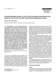 """Báo cáo khoa học: """"Increased phosphorylation of c-Jun NH (2)-terminal protein kinase in the sciatic nerves of Lewis rats with experimental autoimmune neuritis"""""""