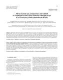 """Báo cáo lâm nghiệp: """"Effect of plant age, temperature and rainfall on Lepidoptera insect pests collected with light traps in a Eucalyptus grandis plantation in Brazil"""""""