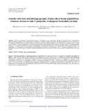 """Báo cáo lâm nghiệp: """"Genetic structure and phylogeography of pine shoot beetle populations (Tomicus destruens and T. piniperda, Coleoptera Scolytidae) in Italy"""""""