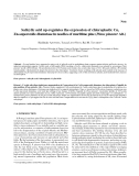 """Báo cáo lâm nghiệp: """"Salicylic acid up-regulates the expression of chloroplastic Cu, Zn-superoxide dismutase in needles of maritime pine (Pinus pinaster Ait.)"""""""