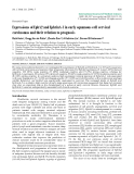 """Báo cáo toán học: """"Expressions of EphA2 and EphrinA-1 in early squamous cell cervical carcinomas and their relation to prognosis"""""""