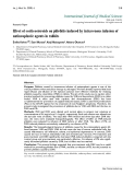 """Báo cáo y học: """"Effect of corticosteroids on phlebitis induced by intravenous infusion of antineoplastic agents in rabbits"""""""
