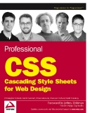 Wrox Professional CSS Cascading Style Sheets for Web Design phần 1