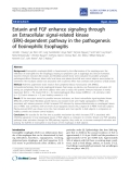 "Báo cáo y học: ""Eotaxin and FGF enhance signaling through an Extracellular signal-related kinase (ERK)-dependent pathway in the pathogenesis of Eosinophilic Esophagitis"""