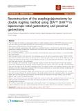 "báo cáo khoa học: ""Reconstruction of the esophagojejunostomy by double stapling method using EEA™ OrVil™ in laparoscopic total gastrectomy and proximal gastrectomy"""