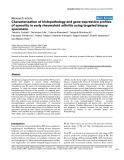 "Báo cáo y học: ""Characterization of histopathology and gene-expression profiles of synovitis in early rheumatoid arthritis using targeted biopsy specime"""