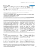 """Báo cáo y học: """"Catabolic stress induces expression of hypoxia-inducible factor (HIF)-1α in articular chondrocytes: involvement of HIF-1α in the pathogenesis of osteoarthritis"""""""