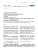 "Báo cáo y học: ""Accelerated development of arthritis in mice lacking endothelial selectins"""