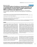 "Báo cáo y học: ""The protective effect of licofelone on experimental osteoarthritis is correlated with the downregulation of gene expression and protein synthesis of several major cartilage catabolic factors: MMP-13, cathepsin K and aggrecanase"""