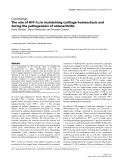 """Báo cáo y học: """"α The role of HIF-1α in maintaining cartilage homeostasis and during the pathogenesis of osteoarthritis"""""""