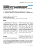 "Báo cáo y học: ""Prostaglandin E2 synthesis in cartilage explants under compression: mPGES-1 is a mechanosensitive gene"""