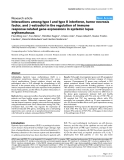 """Báo cáo y học: """" Interactions among type I and type II interferon, tumor necrosis factor, and -estradiol in the regulation of immune response-related gene expressions in systemic lupus erythematosus"""""""