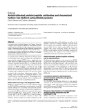 "Báo cáo y học: ""Anticitrullinated protein/peptide antibodies and rheumatoid factors: two distinct autoantibody systems"""