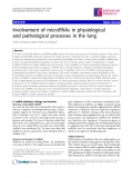 "Báo cáo y học: "" Involvement of microRNAs in physiological and pathological processes in the lung"""