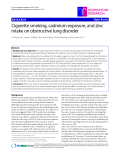 "Báo cáo y học: ""Cigarette smoking, cadmium exposure, and zinc intake on obstructive lung disorder"""