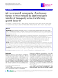 "Báo cáo y học: ""  Micro-computed tomography of pulmonary fibrosis in mice induced by adenoviral gene transfer of biologically active transforming growth factor-b1"""