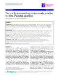 """Báo cáo y học: """" The emphysematous lung is abnormally sensitive to TRAIL-mediated apoptosis"""""""