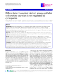 "Báo cáo y học: ""  Differentiated transplant derived airway epithelial cell cytokine secretion is not regulated by cyclosporine"""