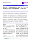 """Báo cáo y học: """" Cigarette smoke exacerbates mouse allergic asthma through Smad proteins expressed in mast cells"""""""