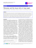 "Báo cáo y học: ""  Fibrocytes and the tissue niche in lung repair"""