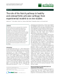 """Báo cáo y học: """"The role of the Notch pathway in healthy and osteoarthritic articular cartilage: from experimental models to ex vivo studies"""""""