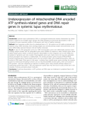 """Báo cáo y học: """"Underexpression of mitochondrial-DNA encoded ATP synthesis-related genes and DNA repair genes in systemic lupus erythematosus"""""""