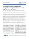 """Báo cáo thú y: """"Survey radiography and computerized tomography imaging of the thorax in female dogs with mammary tumors"""""""