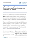 "Báo cáo khoa học: "" Pyelonephritis in slaughter pigs and sows: Morphological characterization and aspects of pathogenesis and aetiology"""
