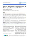 "Báo cáo khoa học: "" Molecular characteristics of Polish field strains of Marek's disease herpesvirus isolated from vaccinated chickens"""