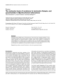 """Báo cáo y học: """" The molecular basis of resistance to isoniazid, rifampin, and pyrazinamide in Mycobacterium tuberculosis"""""""